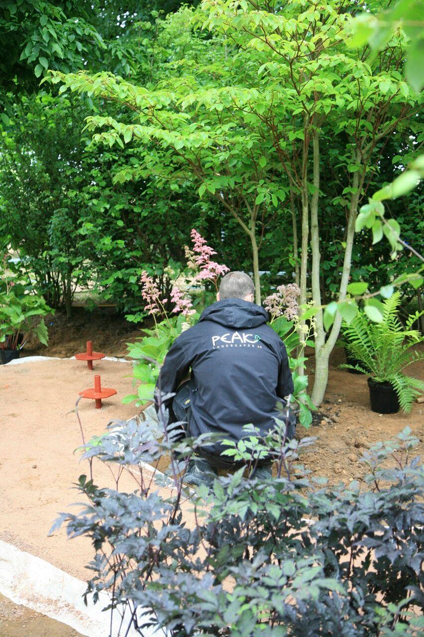Hjelp til hageprosjekt